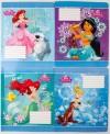 Комплект зошитів . Серія 'Princess' (25 шт в комплекті)