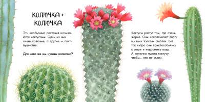 Про растения