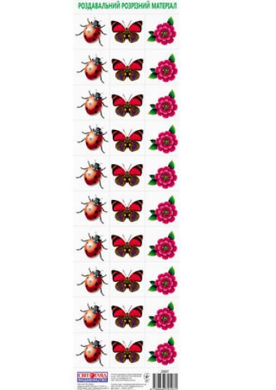 Роздавальний розрізний матеріал 'Квіти, комахи'