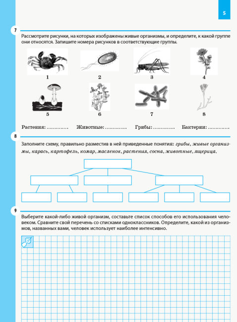 Биология. Рабочая тетрадь. 6 класс