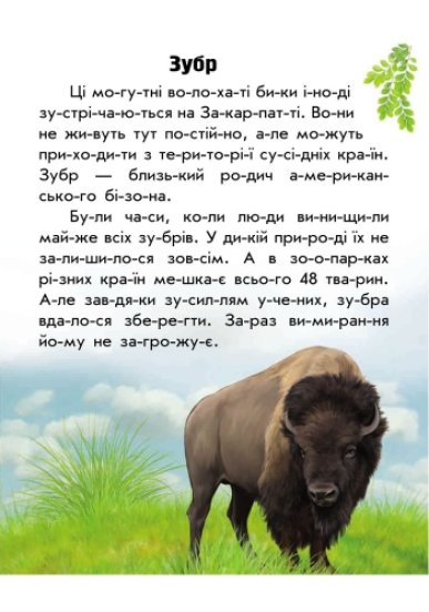 Тваринний світ гір. Моя Україна. Читаємо по складах