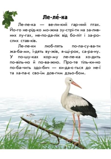 Тваринний світ лугів і степів. Моя Україна. Читаємо по складах
