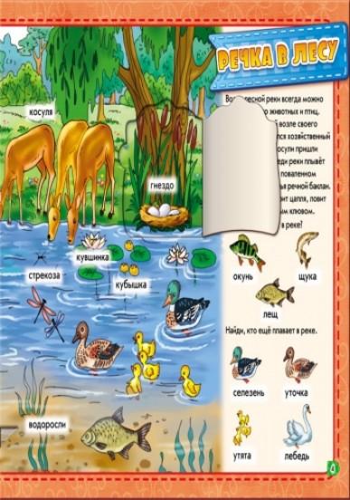 В лесу. . Мой первый словарик с окошками