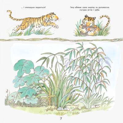 Історії про тварин. Тигреня Сілія