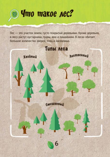 Спасти лес. Экокнига