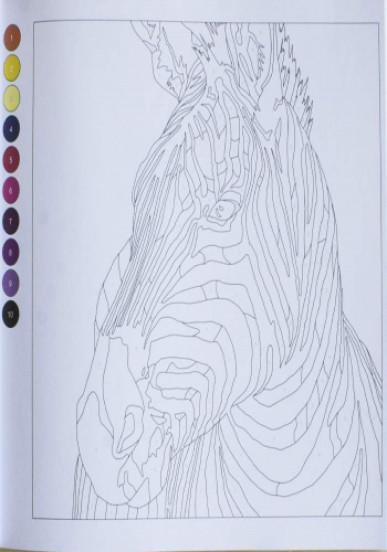 Розмальовка. Колортронік. Калейдоскоп кольорових пригод. Світ тварин