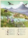 Подорож до дивовижного світу тварин
