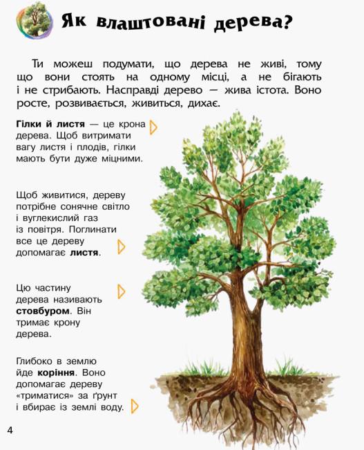 Енциклопедія дошкільника. Ліс