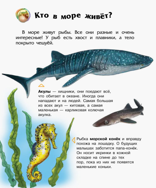 Энциклопедия дошкольника. Океаны и моря