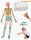 Людина та її тіло. Пізнаємо та досліджуємо