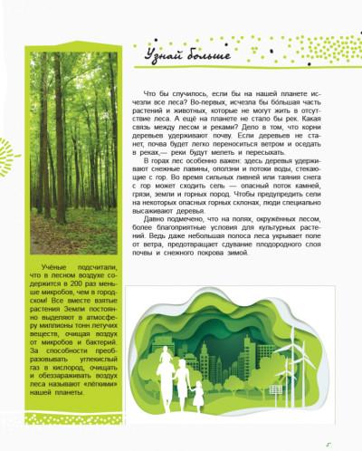 Мир и его тайны. Жизнь леса. Энциклопедия