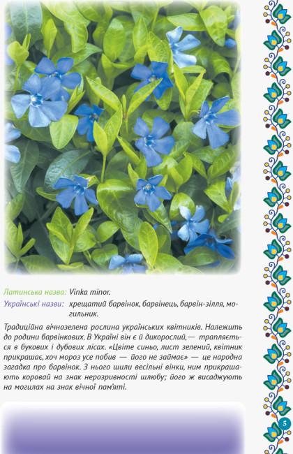 Український квітник
