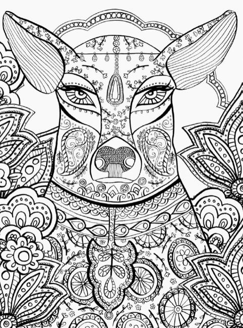 Книга джунглів. (Не)класична розмальовка