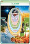 НУШ Наочність нового покоління: Я досліджую світ. Комплект навчальних плакатів. 2 клас