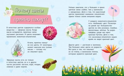 Почемучки. Растения