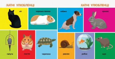 Смарт-книги. 100 тварин