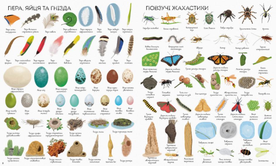 1000 назв природи