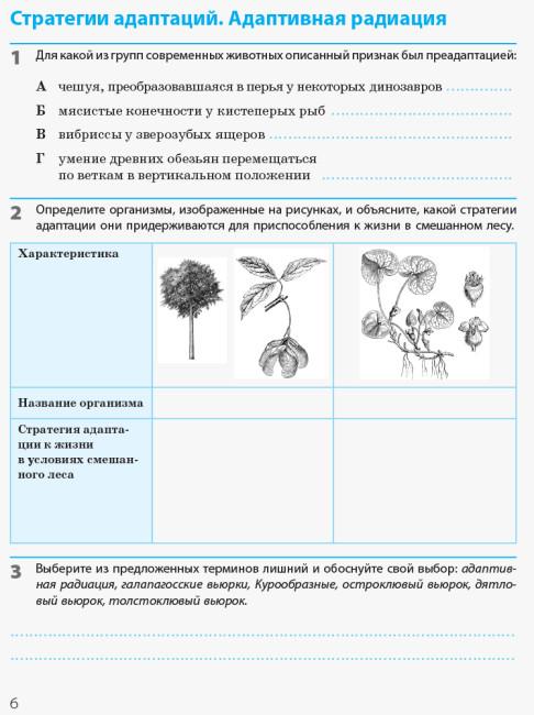 Биология и экология (уровень стандарта). 11 класс. Рабочая тетрадь