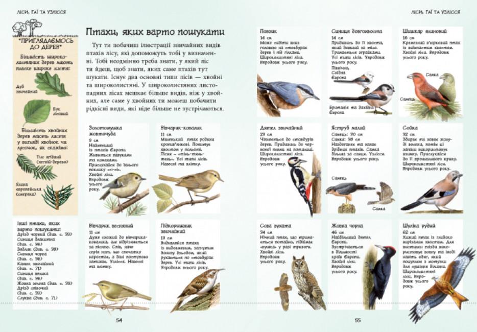 Спостерігаємо за птахами