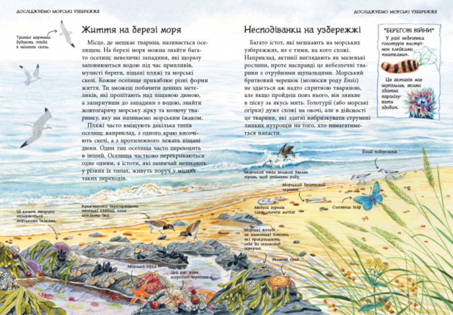 Морські  й океанічні узбережжя