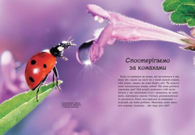 Стежками природи. Комахи й інші маленькі істоти