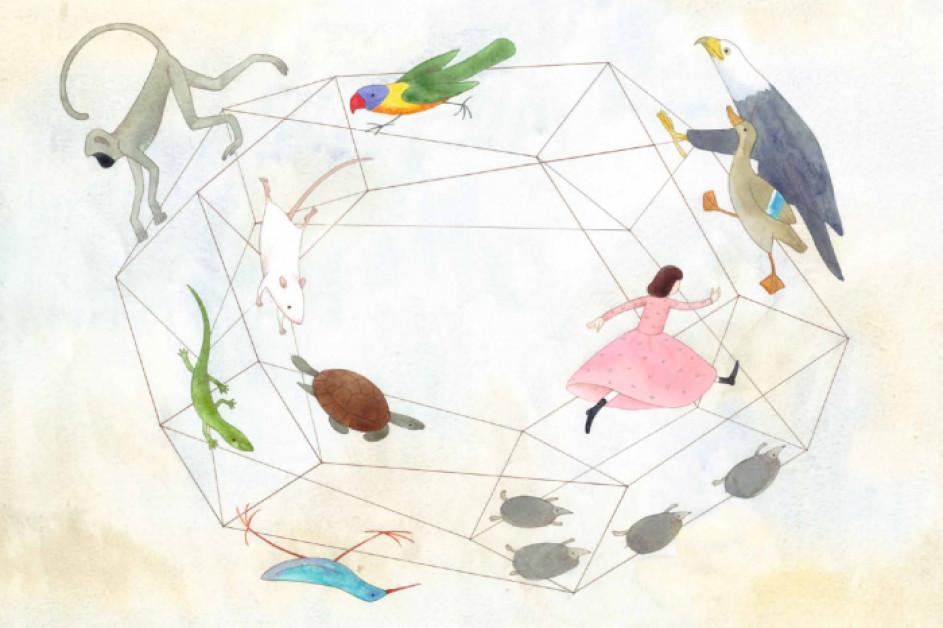 Класика в ілюстраціях. Аліса в Країні див