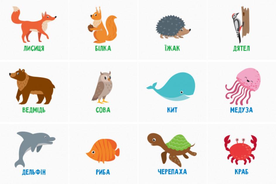 Вивчаємо світ тварин. Гра на липучках