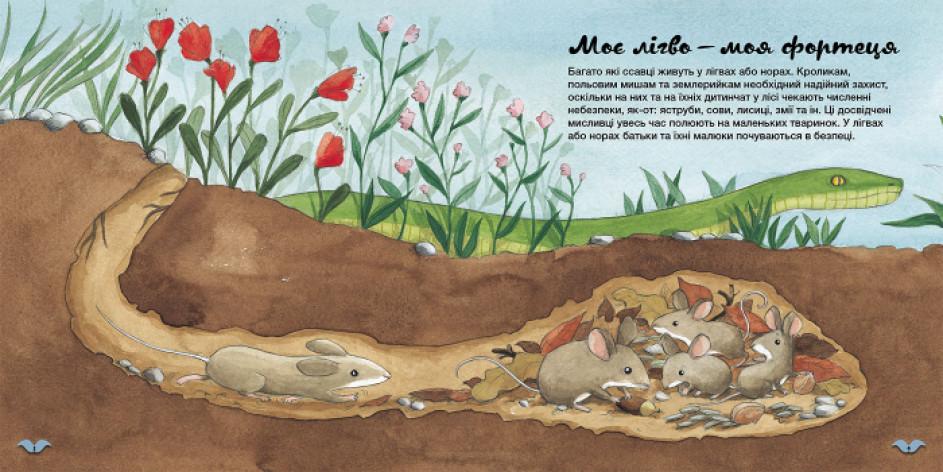 Дізнавайся про світ разом із нами! Як тварини облаштовують свої домівки?