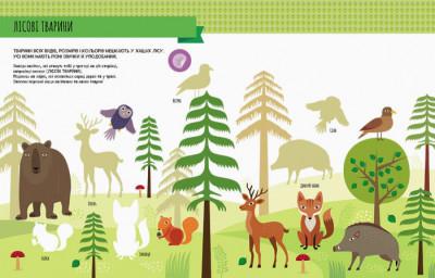 Монтессорі: світ досягнень. Моя перша книга з фантастичними наліпками. У лісі