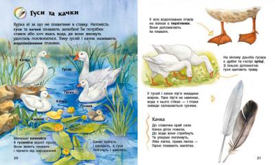 Енциклопедія дошкільника. Свійські тварини