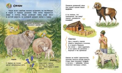 Домашние животные. Энциклопедия дошкольника