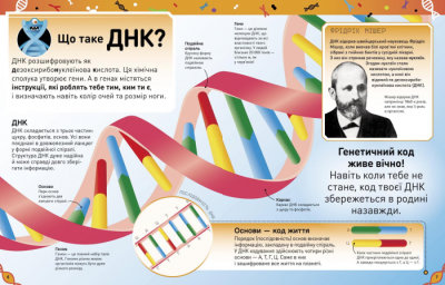 Надзвичайні ДНК. Шалені гени, незламні кодони, верткі хромосоми