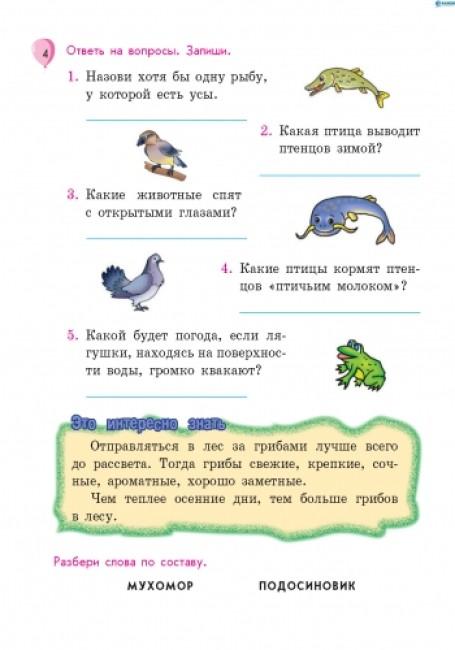 Летние упражнения. Из 4 в 5 класс (для будущих пятиклассников)